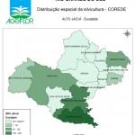 Distribuição Espacial da Silvicultura RS_C_Alto Jacui - eucalipto