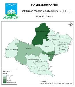 Distribuição Espacial da Silvicultura RS_C_Alto Jacui - pinus
