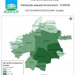 Distribuição Espacial da Silvicultura RS_C_Alto da Serra do Botucarai - eucalipto