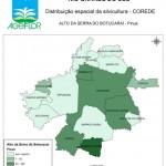 Distribuição Espacial da Silvicultura RS_C_Alto da Serra do Botucarai - pinus