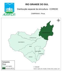 Distribuição Espacial da Silvicultura RS_C_Campanha - pinus