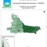 Distribuição Espacial da Silvicultura RS_C_Campos de Cima da Serra