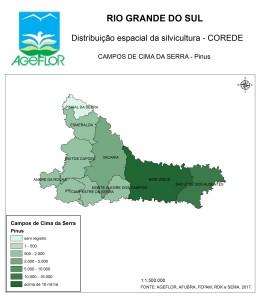Distribuição Espacial da Silvicultura RS_C_Campos de Cima da Serra - pinus