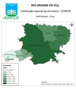 Distribuição Espacial da Silvicultura RS_C_Hortensias - pinus