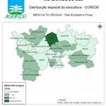Distribuição Espacial da Silvicultura RS_C_Medio Alto Uruguai