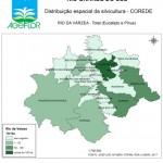 Distribuição Espacial da Silvicultura RS_C_Rio da Varzea