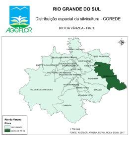 Distribuição Espacial da Silvicultura RS_C_Rio da Varzea - pinus