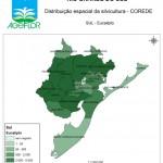 Distribuição Espacial da Silvicultura RS_C_Sul - eucalipto