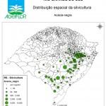 Distribuição Espacial da Silvicultura RS_bol - acacia