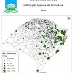Distribuição Espacial da Silvicultura RS_bol - pinus