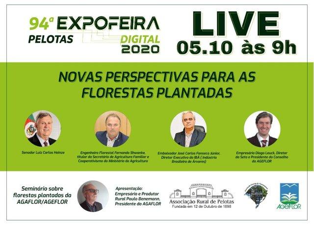expofeira051020